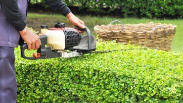 Artificial Grass Nottingham, Fake Grass Staffordshire